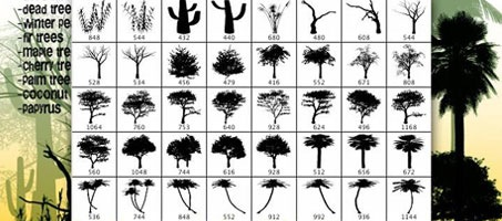 Complete Photoshop Nature Tree Brush Pack Set