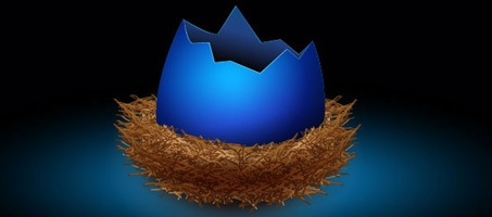 Create a Cute Bird's Nest using Illustrator
