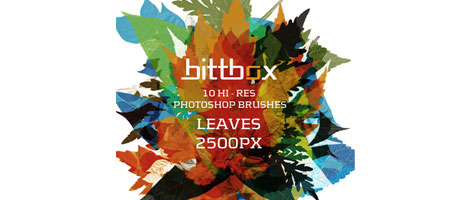 Free High Quality Photoshop Leaf Brushes