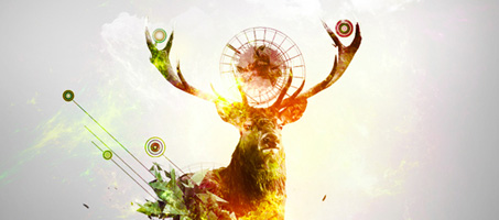 Create a Deer Abstraction